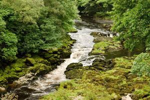 The Bolton Strid