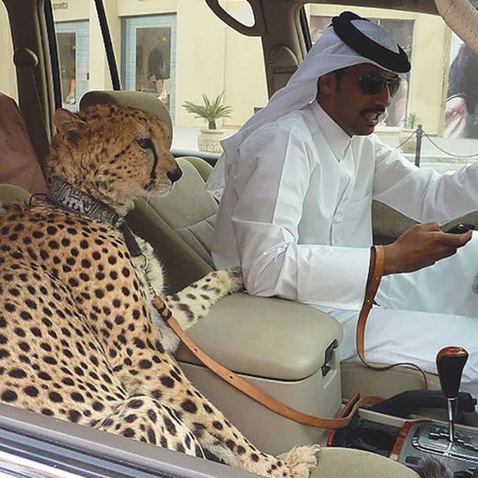 Izlazi iz Dubaija