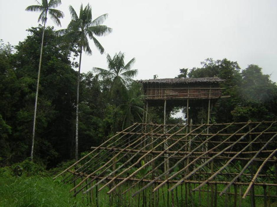Pleme Korowai u Indoneziji | Author: Wikimedia Commons