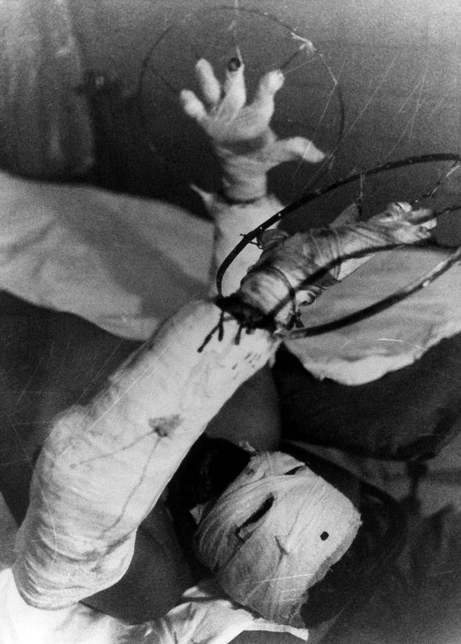 Špkantne fotografije iz Černobila | Author: screenshot