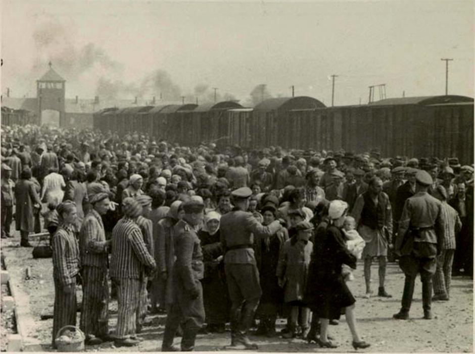 Auschwitz | Author: Wikipedia