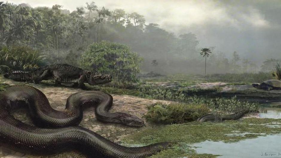Najveća zmija na svijetu Titanboa | Author: Screenshot